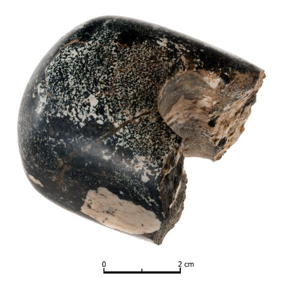 The macehead from Lismullin, Co. Meath (photo by John Sunderland, courtesy of Aidan O'Connell & the NRA).